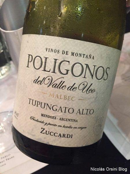 Polígonos Malbec Tupungato Alto 2015