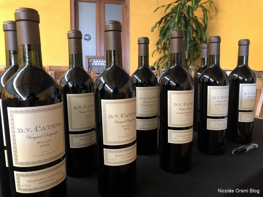 Single Vineyards de D.V Catena