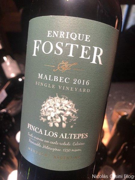 Enrique Foster Malbec 2016 Finca Los Altepes