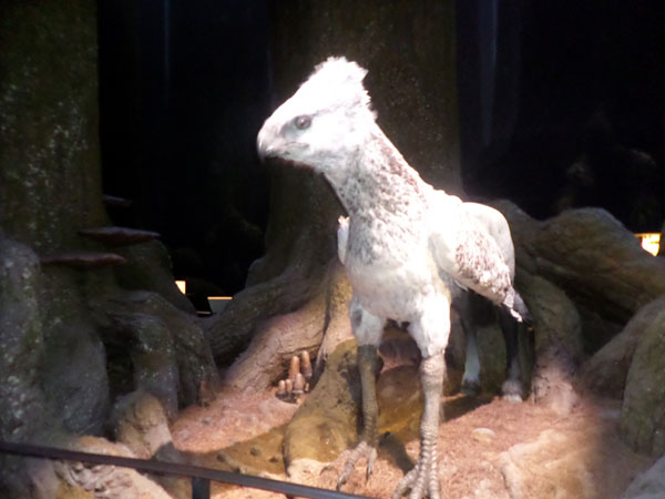 My Magical Harry Potter Studio Tour Adventure – Celebrating my 30th and Exploring the Forbidden Forest  - 16