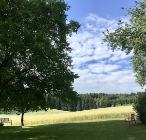 vipassana-retreat-schweigen