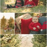 Photographers In Pittsburgh Pa Nutbrown S Christmas Tree Farm Family Photos
