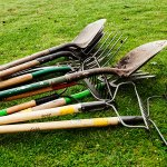 Tools for orchard care