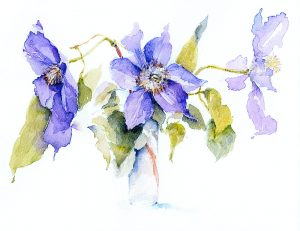 Margaret Clapperton's splendidly painted clematis will be on the flyer now being prepared.