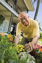 An older asian man doing work in his garden