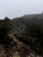 Kilimanjaro3_0006