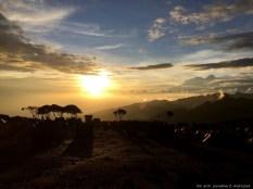 Kilimanjaro3_0013