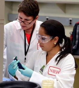 Image result for summer research internships