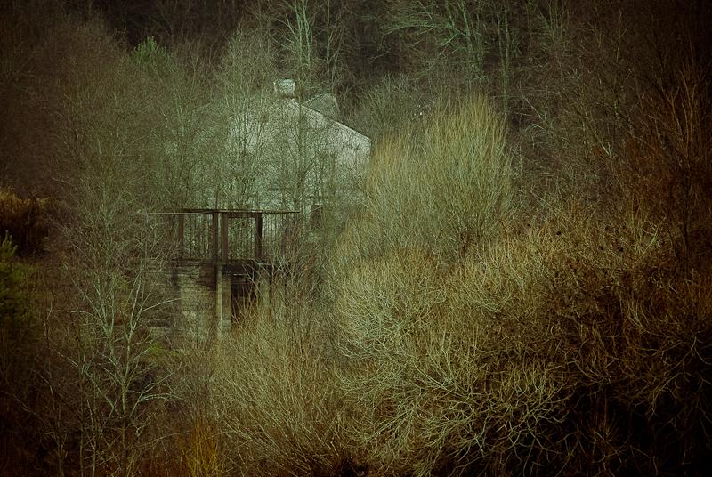 Bradeliškių vandens malūnas rudenį
