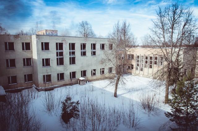 Vidinis instituto kiemas