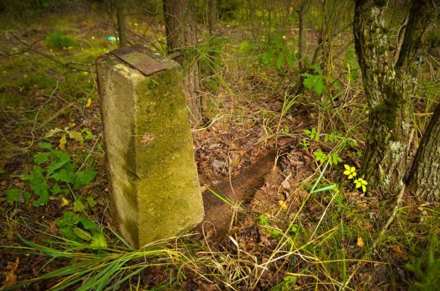 Plieninio kryžiaus fundamentas už kapinių ribos