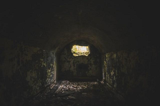 Bunkerio vidus