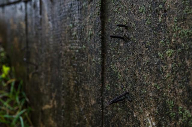 Medinį liejimo karkasą nuėmė, o vinys liko