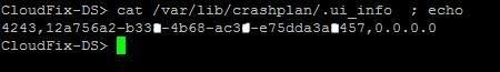 crashplankey