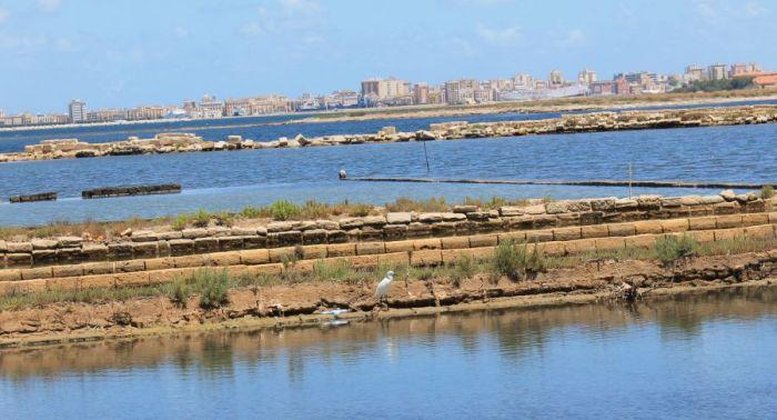 Saliny w Trapani, Rezerwat w Trapani, WWF, Fauna w salinach w Trapani, Ptaki migrujące, Ptaki w Trapani, Trapani, Saline di Nubia, Saliny w Nubii, Sycylia