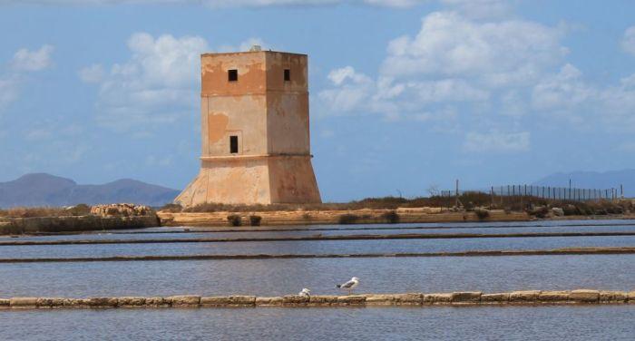 Saliny w Trapani, Fauna w salinach w Trapani, Ptaki migrujące, Ptaki w Trapani, Trapani, Saline di Nubia, Saliny w Nubii, Sycylia