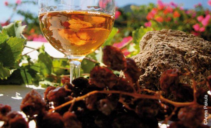 Donnafugata, Marsala, Donnafugata, rodzina Rallo, Rallo, Contessa Entellina, Panele słoneczne, ochrona środowiska, Marsala, Sycylia, Wino, Wino Sycylia, Wino Marsala, Trapani, wina sycylijskie, sycylijskie wina, wina z Sycylii, Khamma, Pantelleria, metoda alberello, zibibbo, passito di pantelleria, moscato di pantelleria, zibibbo, ben rye