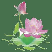 Hình đại diện Phật Pháp vấn đáp 2014