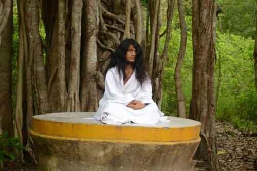 Hình đại diện https://i0.wp.com/www.niemphat.vn/wp-content/uploads/2014/06/Dharma-Sangha.jpg