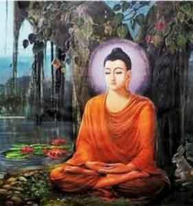 Hình đại diện Tọa thiền niệm Phật