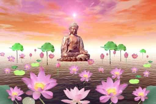 Hình đại diện Khai thị niệm Phật của Liên Trì Đại  Sư