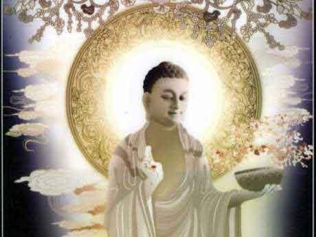 Hình đại diện 25 lời Phật dạy làm thay đổi cuộc đời