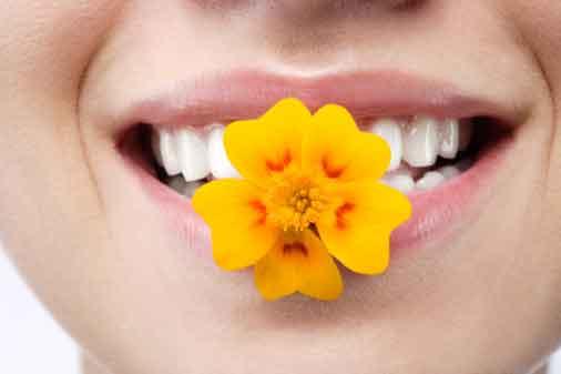 Hình đại diện Tu cái miệng là tu hơn nửa đời người