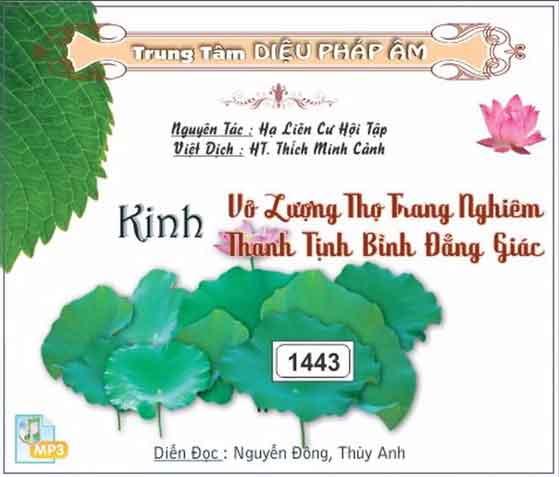 Hình đại diện Kinh Đại Thừa Vô Lượng Thọ Trang Nghiêm Thanh Tịnh Bình Đẳng Giác