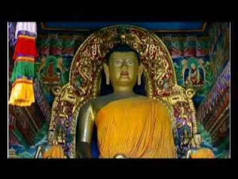 Hình đại diện Namo Amitabhaya