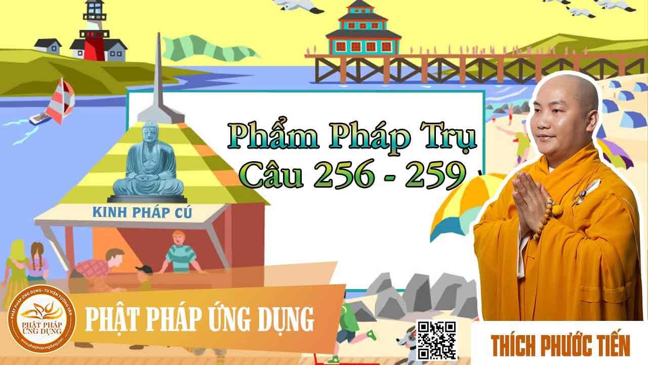 Hình đại diện https://i0.wp.com/www.niemphat.vn/wp-content/uploads/2016/07/kinh-phap-cu-pham-cau-ue-cau-256.jpg