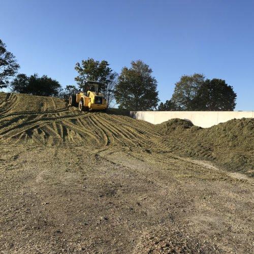 Maisernte 2019 02, Nierswalder Biogasanlage