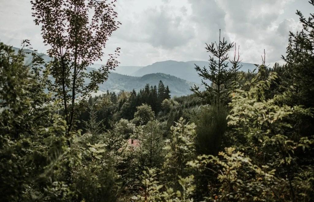 Roadtrippen door de bergen