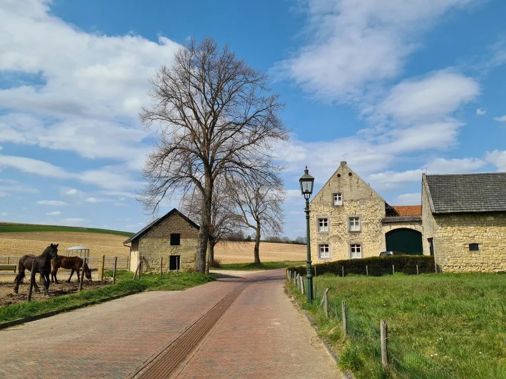 Wijnwandeling Limburg: Winthagen