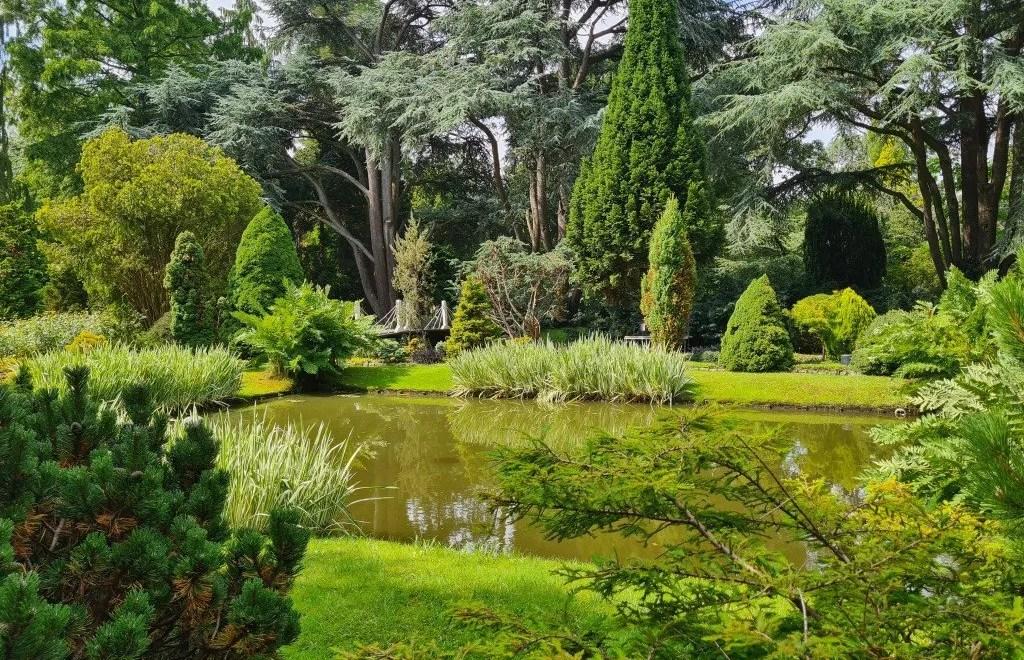 Trompenburg Tuinen: een oase van rust in Rotterdam