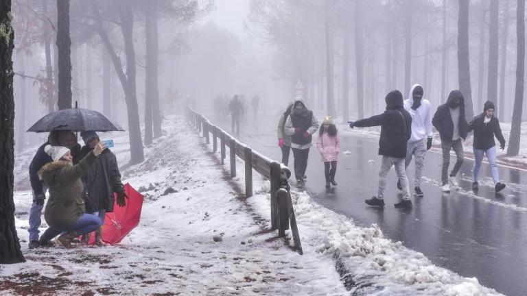 La nieve en la zona de Tejeda el martes 29 de enero