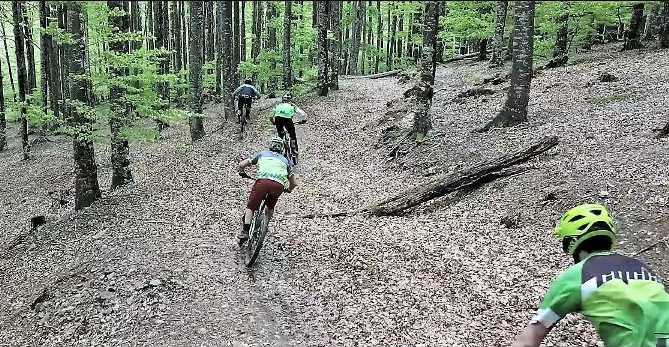 EREMUA, la estación de Bike y Trail será el gran espacio natural del Pirineo Navarro