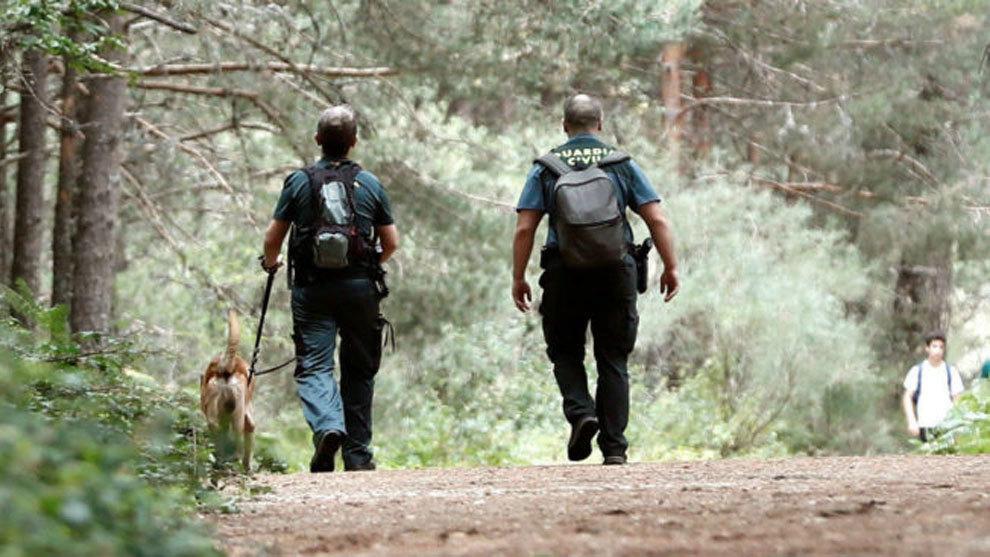 La Policía está realizando batidas con perros en la sierra de Madrid EFE