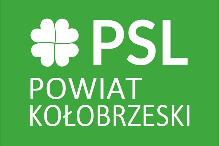 PSL odwołał sekretarza za... krytyczny wpis o prezydent Mieczkowskiej.