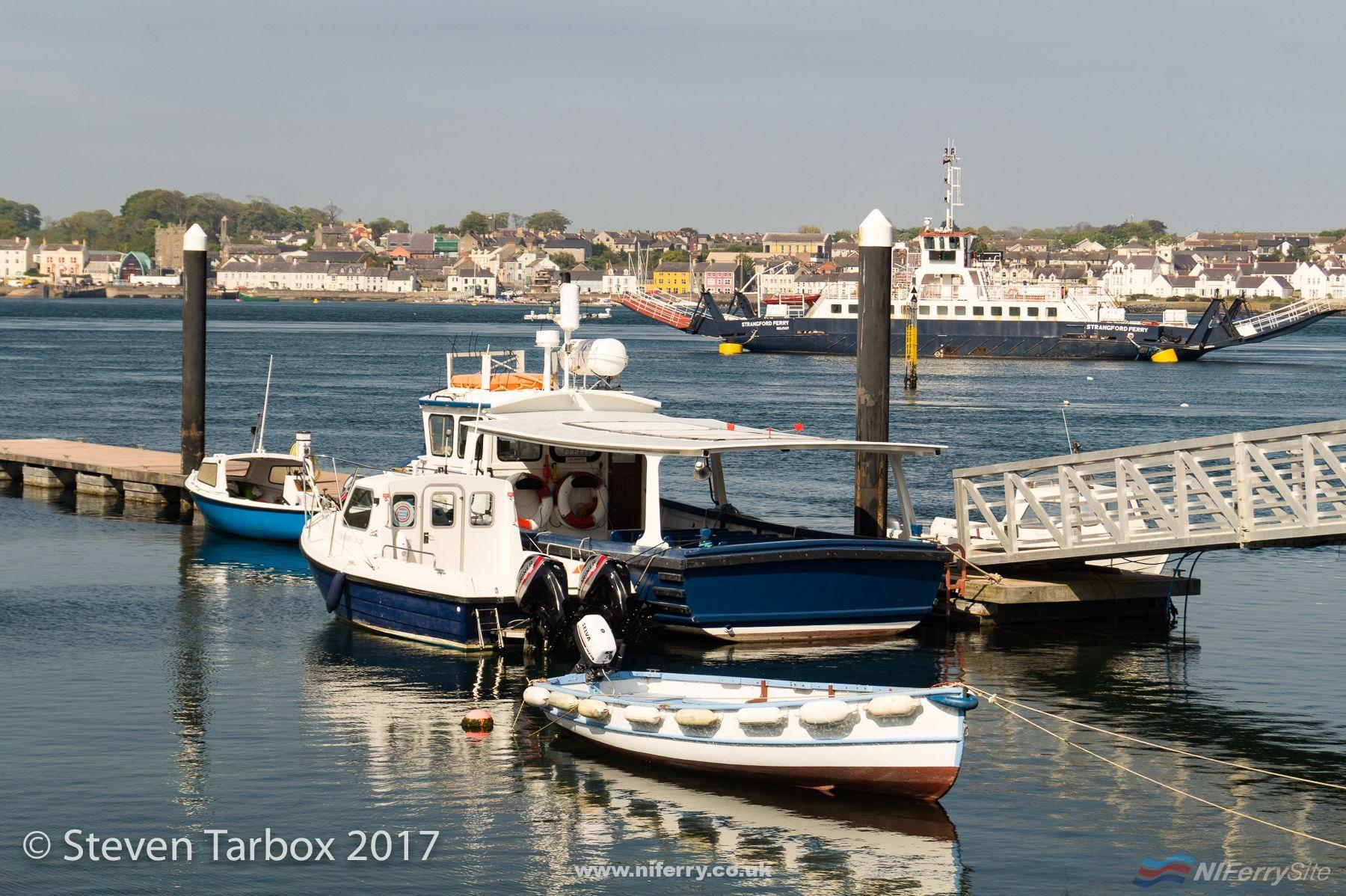 MV RACHLYN (the large vessel, centre) and STRANGFORD moored at Strangford awaiting sale, May 17. © Steven Tarbox