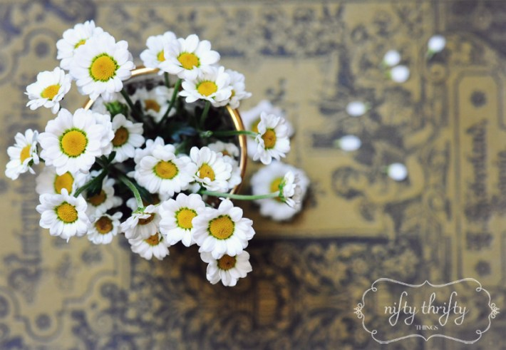 mini chrysanthemum from {nifty thrifty things}