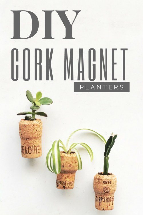 https://i0.wp.com/www.niftythriftythings.com/wp-content/uploads/2017/04/DIY_Cork_Magnet_Planters.jpg?resize=500%2C750