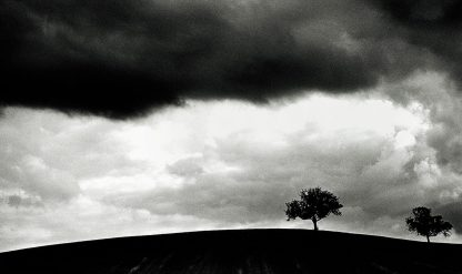 TWO_TREES