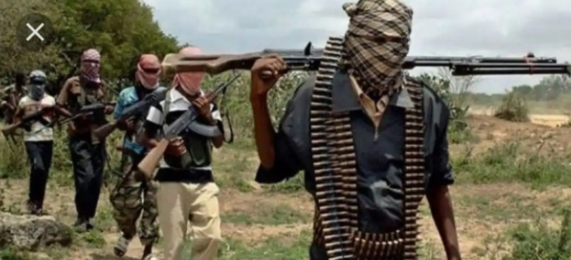 Arrest bandits now and brand them terrorists before Northern Nigeria is finally consumed