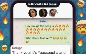 Rouge Ft. Sarkodie, Youssoupha – WAG
