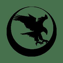 Nighthawk / Bob Marvel Everlast Recoil System-Government