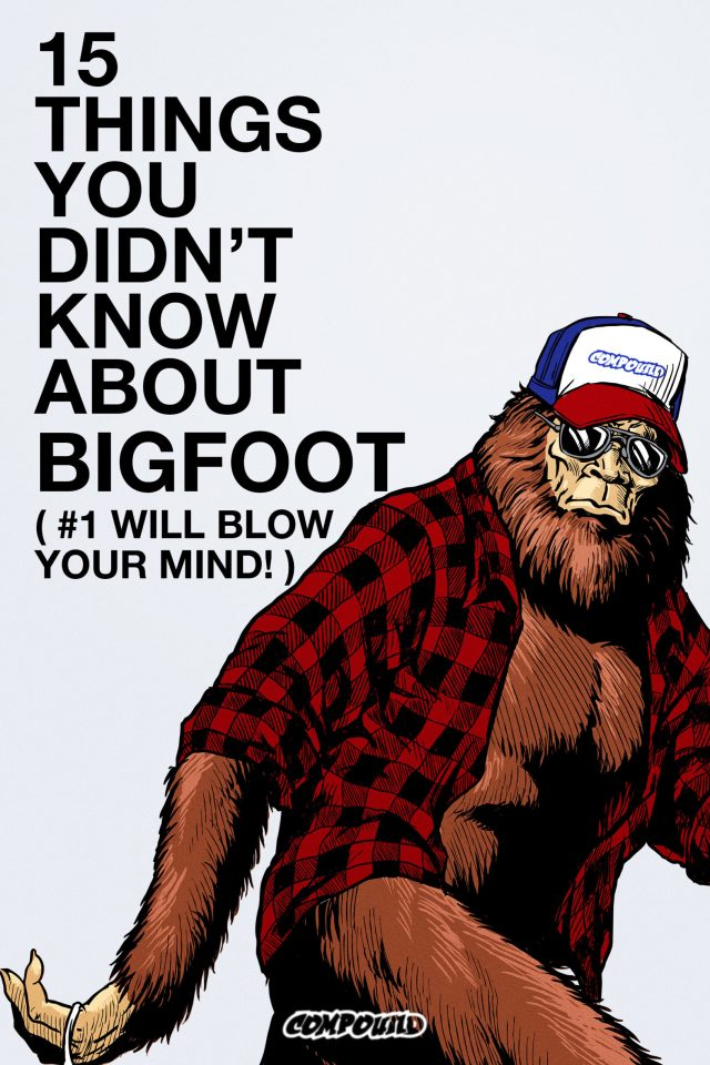 [News] 15 THINGS YOU DIDN'T KNOW ABOUT BIGFOOT (#1 WILL BLOW YOUR MIND) Clip Has Dropped!