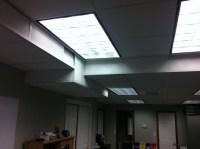 Fluorescent Light vs. a Light that Excites Fluorescence ...