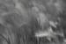 CO2~2~Advanced~John~Telford~Grass_In_The_Wind~58