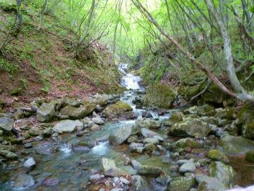 滝見橋から見た二階滝の写真