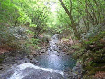 昇竜の橋から見た魚止滝の写真